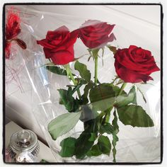 Underbara rosor, våren 2015, Ronneby