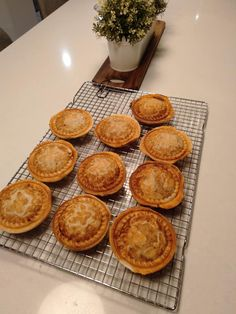 Minced beef with red wine, herbs and gravy pies cooked in the kmart pie maker Beef Pies, Mince Pies, Mini Pie Recipes, Chicken Recipes, Minced Beef Pie, Buttermilk Oven Fried Chicken, Yummy Treats, Yummy Food, Savoury Baking