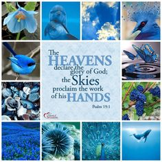 blue-Bible-Verse-Collage