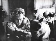 James Dean was a big fan of cats. His pet Siamese, Marcus, was given to him by Elizabeth Taylor Siamese Kittens, Cats And Kittens, Cats Bus, Crazy Cat Lady, Crazy Cats, I Love Cats, Cool Cats, Celebrities With Cats, Celebs
