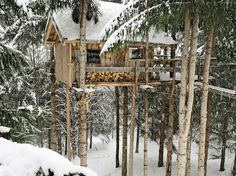 Treehouse to Live in http://www.handimania.com/craftspiration/treehouse-to-live-in.html