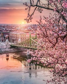 Spring in Budapest, Hungary Places To Travel, Travel Destinations, Places To Go, Most Beautiful Cities, Beautiful World, Places Around The World, Around The Worlds, Wachau Valley, Hungary Travel