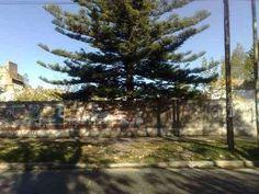 Lote de 12 x 25 S/Av. Zapiola  LOTE DE 12 x 25 sobre avenida zapiola al 1400 en bernal oeste, zonificacion  R 4  Fot 1.2 Fos 0.6 , ...  http://bernal.evisos.com.ar/lote-de-12-x-25-sav-zapiola-id-932368