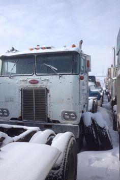 Old girl Junk Yard, Peterbilt, Barn Finds, Big Trucks, Usa, Big Rig Trucks, U.s. States