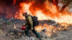 The Men and Women Fighting America's Wildfires Wildland Firefighter Gear, Thin Green Line, Forest Service, Bradley Mountain, Army, The Unit, The Incredibles, America, Firefighting