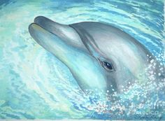 paintings of dolphins | Bottlenose Dolphin Painting - Bottlenose Dolphin Fine Art Print