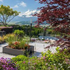 Plants, Terrace, Florals, Garten, Planters, Plant, Planting