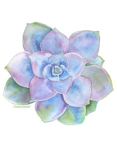 Blue Succulent watercolor giclée reproduction.Portrait/vertical orientation. Printed on fine art paper using archival pigment inks. This quality printing allows