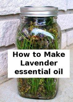 How to make mavender essential oil.