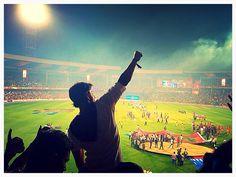Celebrations as KKR win
