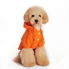 Outtop Pet Clothes, Small Dogs Hoodie Coat Shirt Apparel Costume Accessory for Dog Dachshun Chihuahuad (XL, Orange) * Check out this great image @