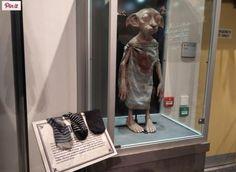 Des fans d'Harry Potter offrent leurs chaussettes pour libérer Dobby