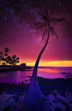Sunset In Hawaii photography sky sunset beautiful clouds travel palm trees vacation destination destinations
