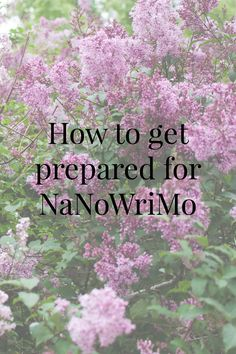 How on earth are you supposed to write a novel in 30 days? With these steps at least you'll be well prepared. (Scroll down for english text.)