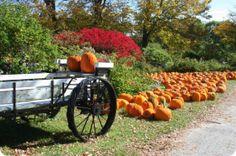 River Bend Farm and Visitors Center | Central Massachusetts Convention & Visitors Bureau