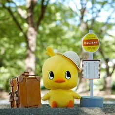 Hiyoko-chan チキンラーメン ひよこちゃん