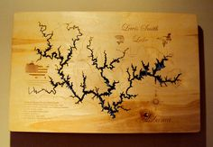 Just bought this for lake house. It is beautiful! Smith Lake Alabama, Lake House Rentals, Lake Decor, Sweet Home Alabama, Outdoor Fun, Vintage World Maps, My Love, Water, Pictures