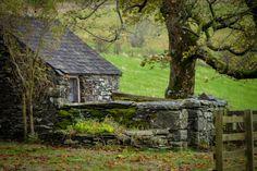 bonitavista:  Snowdonia, Wales photo via deb