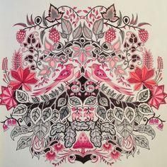 Johanna Basford | Picture by Cheryl Tyler |Colouring Gallery | Inspirational Coloring Pages #inspiração #coloringbooks #livrosdecolorir #jardimsecreto #secretgarden #florestaencantada #enchantedforest #reinoanimal #animalkingdom #adultcoloring #johannabasford #lostocean #oceanoperdido
