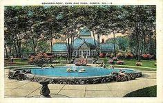 Peoria Illinois IL 1920s Glen Oak Park Conservatory Antique Vintage Postcard Peoria Illinois IL 1920s Glen Oak Park Conservatory. Unused E. C. Kropp collectible antique vintage postcard in very good c