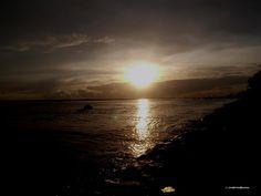 Dark and the Sun*