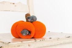 Sweet mice and their pumpkin