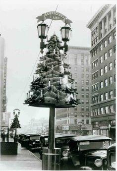 1933 Ornamental Christmas Tree On Hollywood Blvd.
