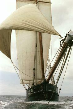 Raise the sail...