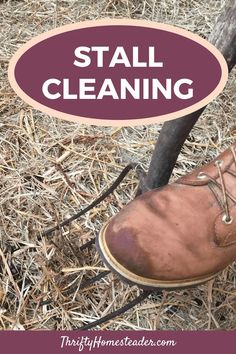 It's not fun or sexy or exciting, but it is necessary — cleaning or mucking out stalls. If you asked ten people how they do this, you'd probably get ten different answers, and our answer has changed over the years. The answer may also vary based upon the animals occupying the stalls. #stallcleaning #homestead_activity Keeping Goats, Raising Goats, Raising Chickens, Backyard Farming, Chickens Backyard, Off Grid Homestead, Warm Bed, Small Farm, Grow Your Own Food