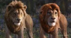 'The Lion King' deepfake uses original movie to 'fix' the CGI — Mashable Lion King Remake, Lion King Fan Art, Scar Lion King, Disney And Dreamworks, Disney Pixar, Art Roi Lion, Timon Et Pumbaa, Le Roi Lion Film, Desenhos Gravity Falls