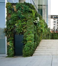 normal_portrait_natura_towers_exterior_6