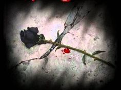 Dark Love Poems Poetry I find this interesting Celine Dion, Beautiful Lyrics, Life Is Beautiful, Beautiful Images, Beautiful Flowers, Anberlin Lyrics, Slipknot Lyrics, She Wants Revenge, Romantic Love Poems