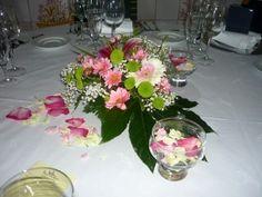 Un jardin tranquilo en tu mesa.