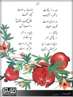 Iran Pictures, Text Pictures, Islamic Pictures, What Is Philosophy, Persian Alphabet, Colourful Wallpaper Iphone, Father Poems, Persian Language, Persian People
