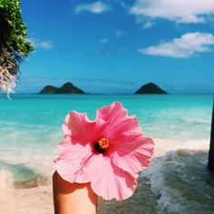 """Find and save images from the """"My Year in Hearts - collection by ✲Endless.Summer✲ (endless_summer_paradise) on We Heart It, your everyday app to get lost in what you love. Poses Photo, Photo Shoot, The Beach, Sunset Beach, Sand Beach, Beach Waves, Beach Bum, Tropical Vibes, Tropical Paradise"""