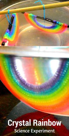 Crystal Rainbows | Saturation & Crystallization | STEM