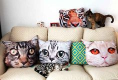 ¿Pelea con almohadas? ¿Pelea de gatas? De cualquier forma, esto es la purrrfección para una fiesta de pijamas