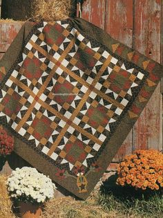 A Country Treasure Quilt Pattern Pieced/Applique DW