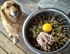Grain free dog food, organic eggs, veggie juice pulp and raw turkey!  What a healthy meal for your best friend!