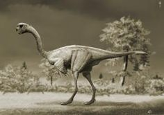 How Much Do You Know About Gigantoraptor?: How Much Do You Know About Gigantoraptor?