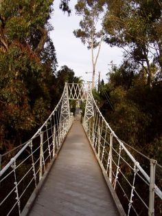 5 bridges in San Diego worth exploring - check out our guide to these historical beauties!
