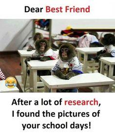 Funny dank dump of funny dank memes Funny School Jokes, Very Funny Jokes, Crazy Funny Memes, Funny Facts, Funny Stuff, Bff Quotes Funny, Jokes Quotes, True Quotes, School Life Quotes