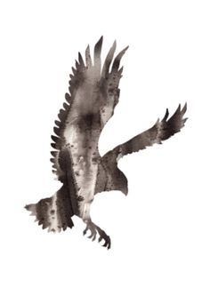 Eagle Bird Abstract Watercolor Ink Painting Fine Art Print, Archival Giclee, Home Decor, Black, White on Etsy, $24.02 AUD