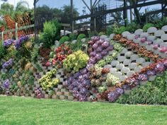 straight narrow block retaining walls and how best to decorate them geometrically with succulents and flowering plants - Google Search