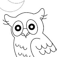 Coloring true owl