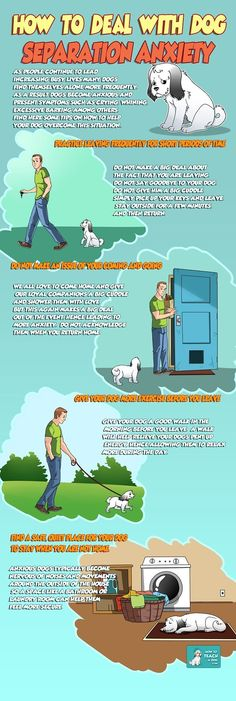 How to deal with dog separation anxiety - http://www.howtoteachadog.com/how-to-deal-with-dog-separation-anxiety