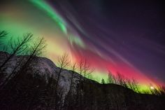 Aurora Borealis - Alaska. Doug when you see this ask me about it. I have a really cool idea!