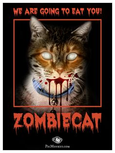"""Riff on the classic """"Zombie"""" movie poster. All done with PicMonkey's Zombie photo editing effects."""