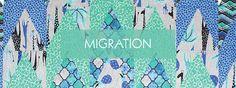 Migration - COLLECTIONS - SHOP