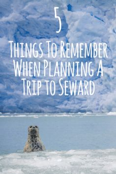 Five Things To Remember When Planning A Trip to Seward, Alaska http://sewardhelicopters.com/advice-on-planning-a-trip-to-seward-alaska